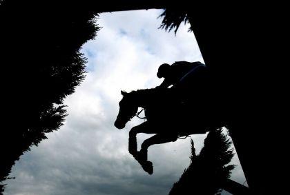<strong>Paardencross Oldeberkoop</strong>